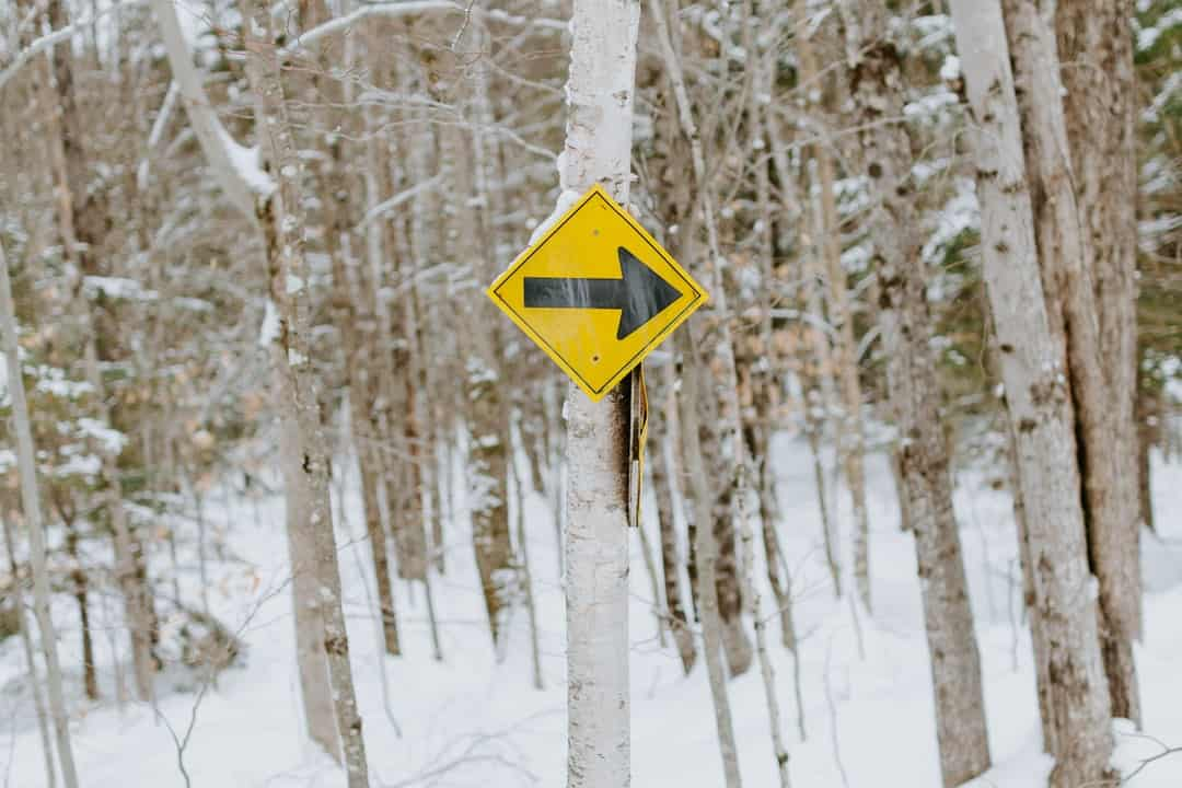 A sign on the side of a snow covered tree